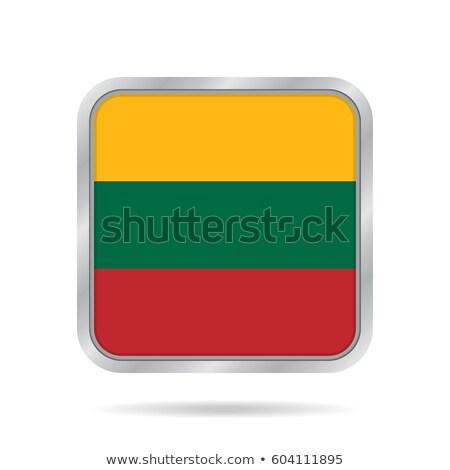 Vierkante metaal knop vlag Litouwen geïsoleerd Stockfoto © MikhailMishchenko