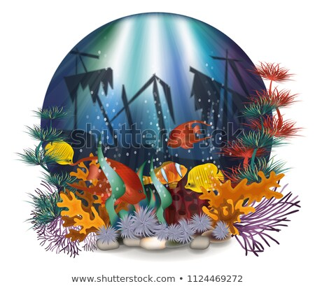 Underwater wallpaper with shipwrecks and tropical fish, vector illustration Stock photo © carodi
