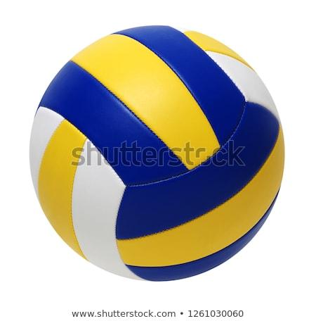Blauw volleybal bal geïsoleerd witte strand Stockfoto © tetkoren