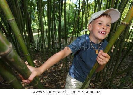 Jongen bamboe bosje boom natuur kind Stockfoto © Paha_L