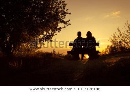 силуэта · человека · скамейке · смотрят · закат · сидят - Сток-фото © jeffmcgraw