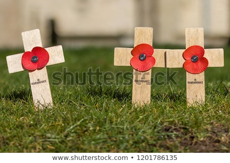 Day of remembrance for war veterans. Veterans Day. Cross with  s Stock photo © popaukropa