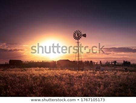 Fırıldak gün batımı bir altın güneş Stok fotoğraf © Klinker