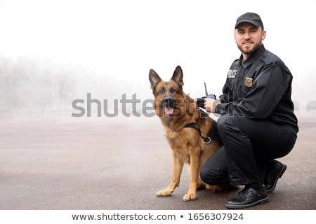 Police dog. Policeman with a german shepherd on duty. Stock photo © wellphoto