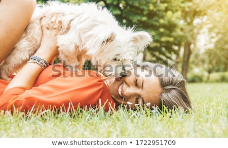 Have a lick. Stock photo © Fisher