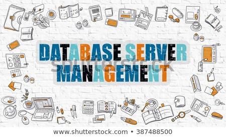 Database server gestione doodle design Foto d'archivio © tashatuvango