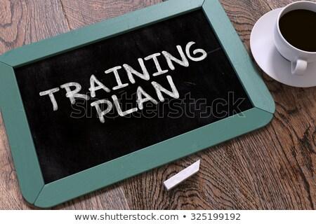 hand drawn time to plan concept on small chalkboard stock photo © tashatuvango