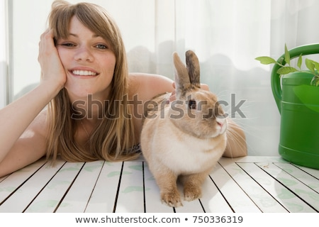 Young woman and a pet rabbit on a patio Stock photo © IS2