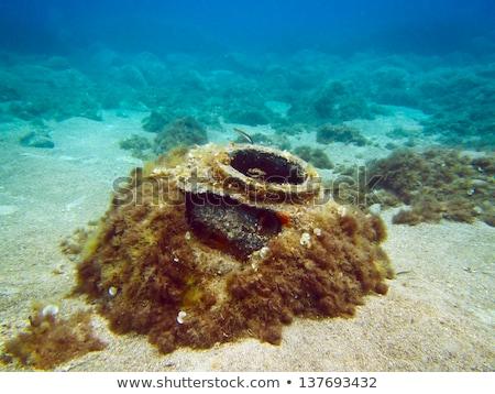 Underwater mines Stock photo © Andreus