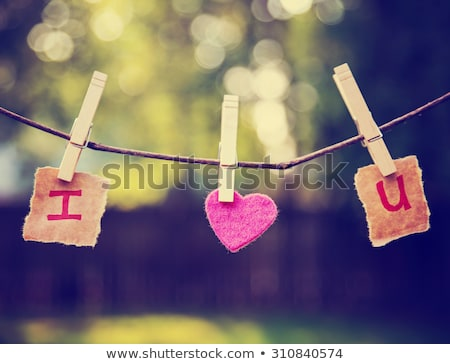Clothespin letter U Stock photo © boggy
