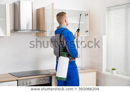 Foto stock: Pest Control Worker Spraying Insecticide On Shelf