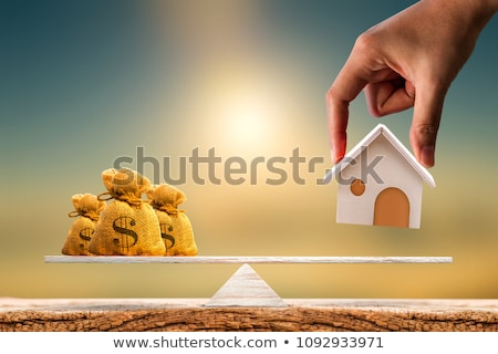 Balancing Growing House Models Stock photo © AndreyPopov