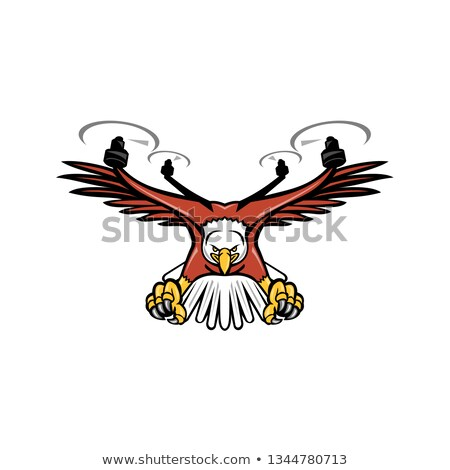 Half Eagle Half Drone Swooping Mascot  Stock photo © patrimonio