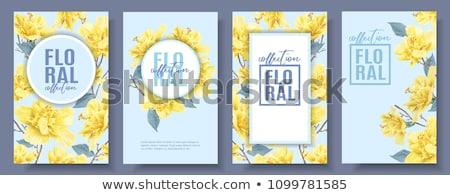 keret · sablon · sárga · virágok · illusztráció · tavasz · természet - stock fotó © bluering