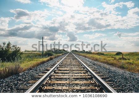 Rail weg licht trein industrie Stockfoto © nomadsoul1
