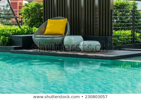 Bahçe yüzme havuzu çiçekler modern villa havuz Stok fotoğraf © ShustrikS