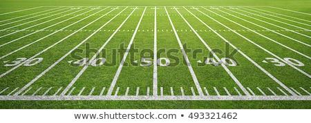 Americano campo de fútbol línea superior vista aislado Foto stock © -TAlex-