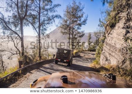 Widoku wewnątrz samochodu jazda konna w dół drogowego Zdjęcia stock © galitskaya