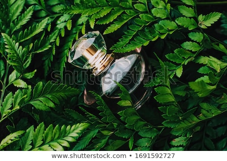 Perfume bottle with aromatic tropical scent in nature, luxury fragrance Stock photo © Anneleven