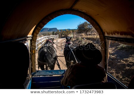 ride in a wagon pulled by two western horses Stock photo © flariv