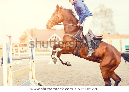 young man horse riding stock photo © photography33
