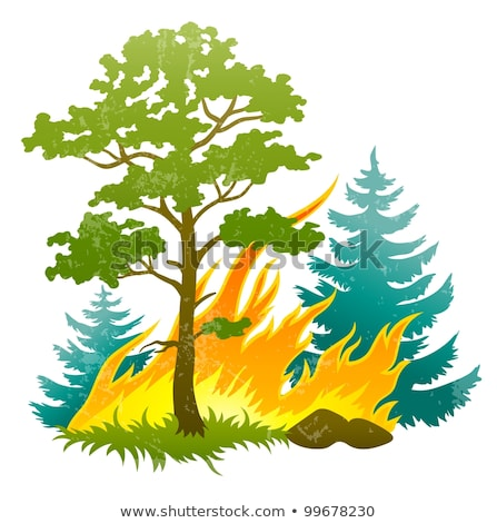 wildfire disaster with burning forest tree and firtrees Stock photo © LoopAll