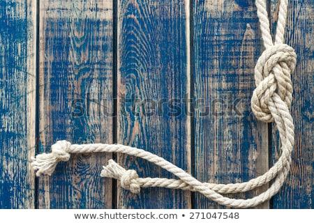 веревку строку выветрившийся древесины текстуры пространстве Сток-фото © stevanovicigor