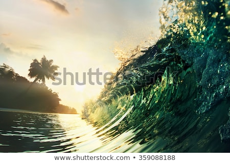 Waves Closeup on the Beach stock photo © grivet