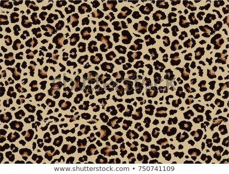 vector animal skins stock photo © ramonakaulitzki