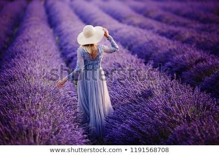 Meisje lavendel veld cute meisje make veld Stockfoto © Talanis