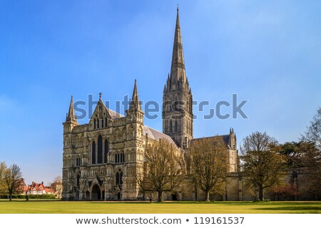 Salisbury Cathedral and park on sunny day, South England Stock photo © Bertl123