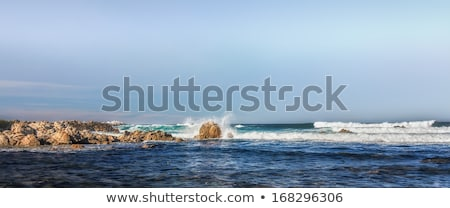 Panorama of Waves Hitting Rocks in Pacific Grove Stock photo © wolterk