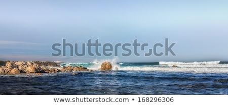 Panoráma hullámok kövek liget óceán tengeri Stock fotó © wolterk