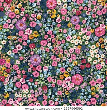 Seamless pattern of flowers on a dark background Stock photo © elenapro