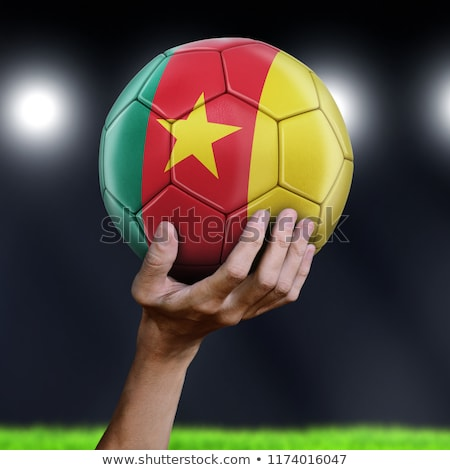 3d man hands holding a Cameroon flag Stock photo © Istanbul2009