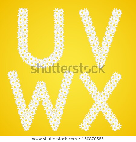Letters UVWX composed from daisy flowers. Complete alphabet in the gallery. Stock photo © liliwhite