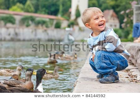 カモ · 家族 · 市 · 公園 · 赤ちゃん · 子供 - ストックフォト © serpla