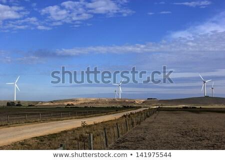 Szélfarm tájkép technológia mező szél elektromosság Stock fotó © benkrut