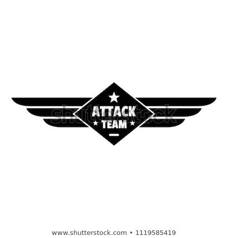 空気 チーム 郡 青 飛行機 平面 ストックフォト © leonido