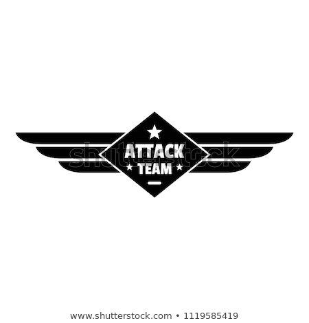 Stock photo: Air force team. Vector illustration
