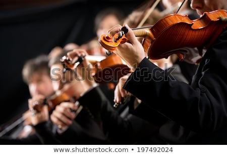Senfoni orkestra parti konser siluet bant Stok fotoğraf © adrenalina