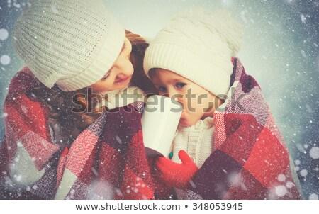Winter bos lopen warm deken Stockfoto © Kor