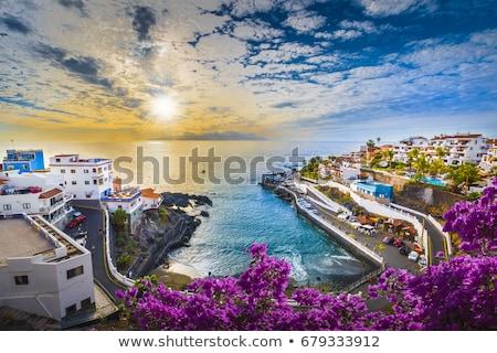 絵のように美しい 風景 テネリフェ島 カナリア諸島 スペイン 空 ストックフォト © amok
