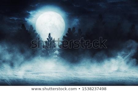Lua cheia nuvens fundo azul nuvem escuro Foto stock © digoarpi