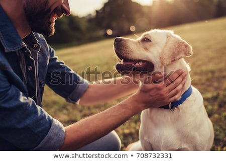 Man Walking Dog At Sunset stock photo © HdcPhoto