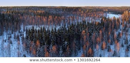 日没 · 北 · フィンランド · サークル · 川 - ストックフォト © ollietaylorphotograp