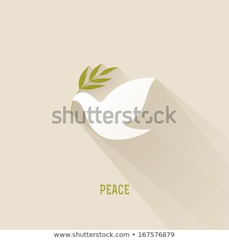 duif · olijfolie · vrede · Pasen · voorjaar · vogel - stockfoto © marimorena