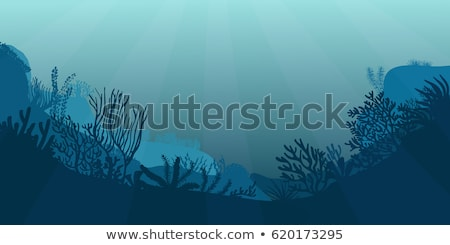 estate · Ocean · panorama · banner · illustrazione · cartoon - foto d'archivio © carodi