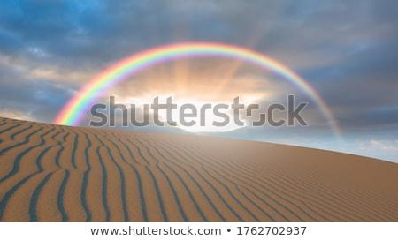 Regenboog woestijn prachtig australisch landschap storm Stockfoto © kwest