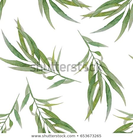 Сток-фото: бесшовный · стороны · окрашенный · зеленый · трава · шаблон